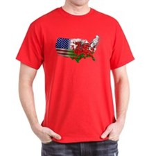Welsh Placenames USA T-Shirt