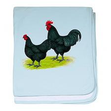 Australorp Chickens baby blanket