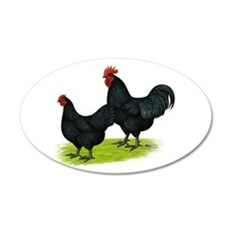Australorp Chickens 22x14 Oval Wall Peel