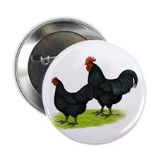 "Australorp Chickens 2.25"" Button (10 pack)"
