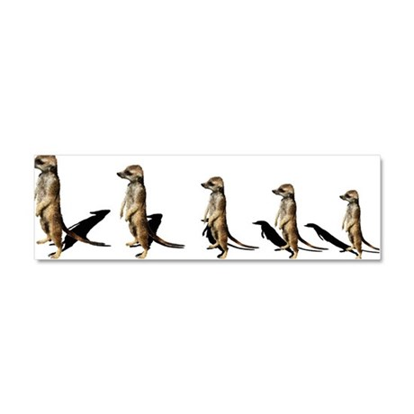 suricates in a row Car Magnet 10 x 3
