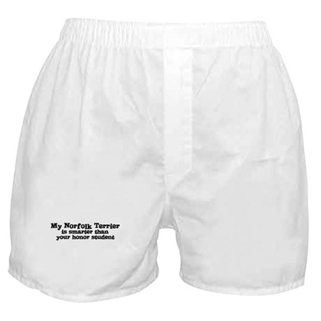 Honor Student: My Norfolk Ter Boxer Shorts