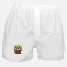 Easter boxer puppies Boxer Shorts