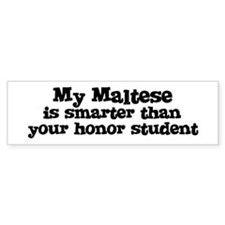 Honor Student: My Maltese Bumper Bumper Sticker