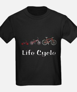 Life Cycle T