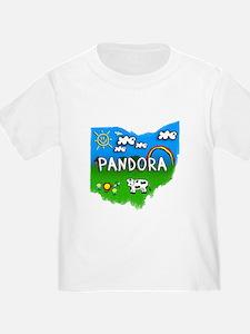 Pandora, Ohio. Kid Themed T