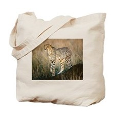 The Hunt Begins Tote Bag