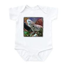 Bearded Dragon Infant Creeper
