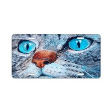 Blue-eyed Cat Aluminum License Plate