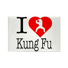 I Love Kung Fu Rectangle Magnet