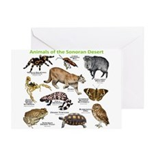Animals of the Sonoran Desert Greeting Card