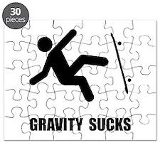 Skateboard Gravity Puzzle