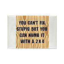 Numb Stupid Rectangle Magnet (10 pack)