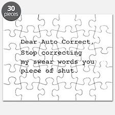 Auto Correct Shut Puzzle