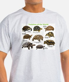 Tortoises of the World T-Shirt