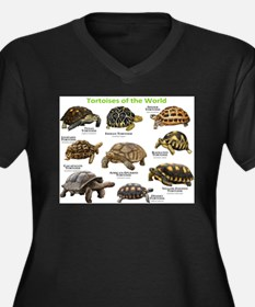 Tortoises of the World Women's Plus Size V-Neck Da
