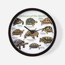 Tortoises of the World Wall Clock