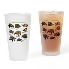 Tortoises of the World Drinking Glass