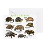 Reptile Greeting Cards (10 Pack)