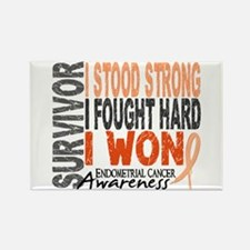 Survivor 4 Endometrial Cancer Shirts and Gifts Rec