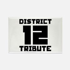 The Hunger Games District 12 Tribute Rectangle Mag