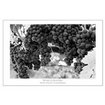 napa valley wine country Large Poster