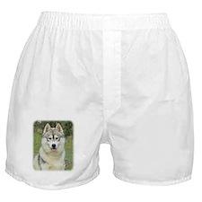 Siberian Husky 9L69D-14 Boxer Shorts