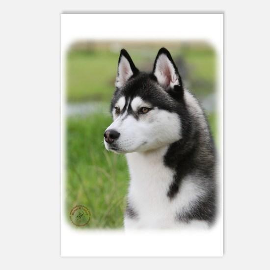 Siberian Husky 9Y570D-006 Postcards (Package of 8)