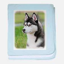 Siberian Husky 9Y570D-006 baby blanket