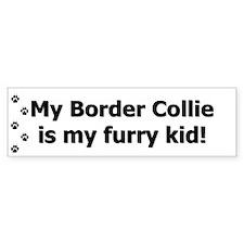 Border Collie Furry Kid Bumper Stickers