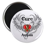 Cure Autism Magnet