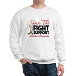 Join The Fight Autism Sweatshirt