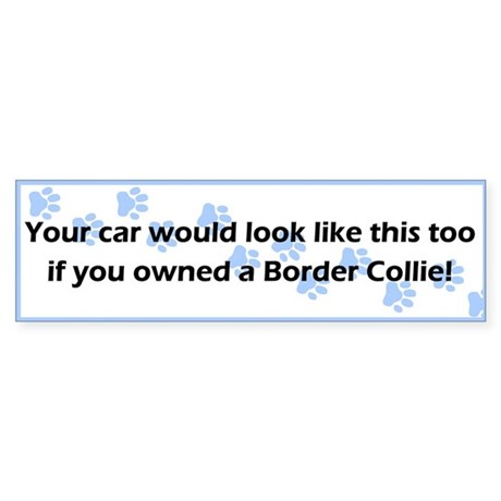 Your Car Border Collie Bumper Sticker