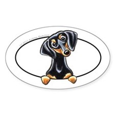 Black Tan Dachshund Peeking Bumper Decal