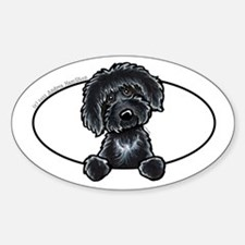 Black Labradoodle Peeking Bumper Sticker (Oval)