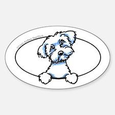 Puppy Cut Maltese Peeking Bumper Sticker (Oval)
