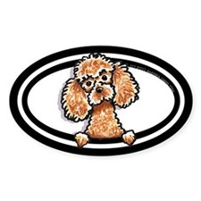 Apricot Poodle Peeking Bumper Decal