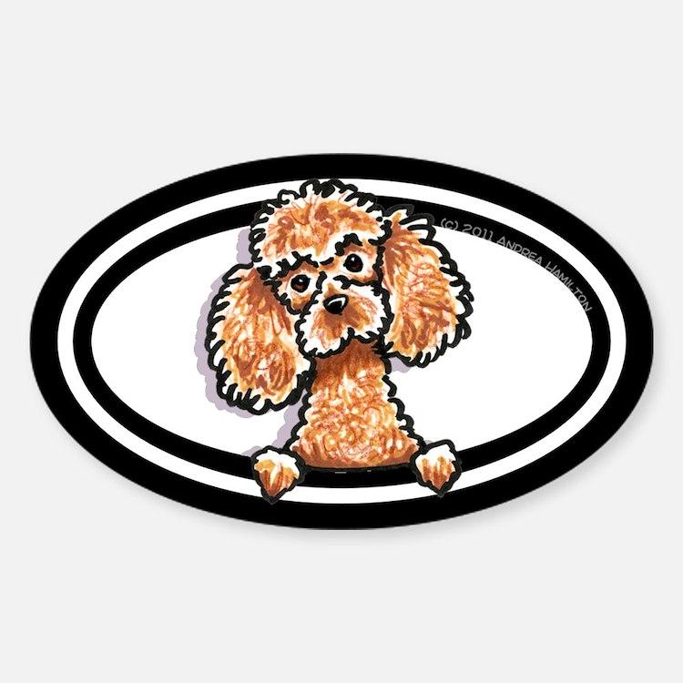 Apricot Poodle Peeking Bumper Sticker (Oval)