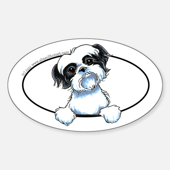 Black White Shih Tzu Peeking Bumper Sticker (Oval)