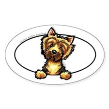 Norwich Terrier Peeking Bumper Decal