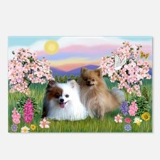 Pom Pair in Blossoms Postcards (Package of 8)
