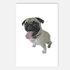 Pug Close-Up Postcards (Package of 8)