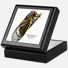 Cecropia Moth Caterpillar Keepsake Box