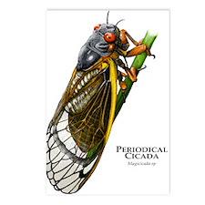 Cecropia Moth Caterpillar Postcards (Package of 8)