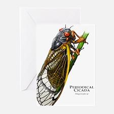 Cecropia Moth Caterpillar Greeting Cards (Pk of 10