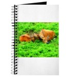 Nuzzling Cows Journal