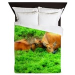 Nuzzling Cows Queen Duvet