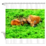 Nuzzling Cows Shower Curtain