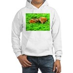 Nuzzling Cows Hooded Sweatshirt