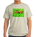Nuzzling Cows Light T-Shirt